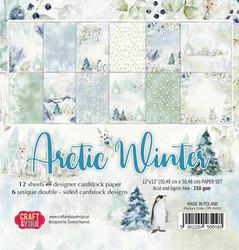 Craft & You paperipakkaus  Arctic Winter, 12