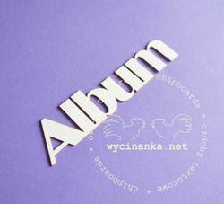 Chipboard tekstileike, Album, 1 kpl
