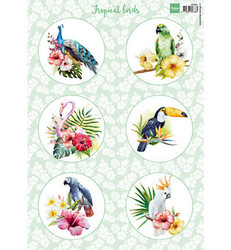 Marianne Design korttikuvat Tropical birds