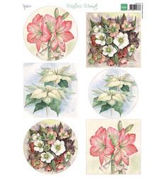 Marianne Design korttikuvat Mattie's Mooiste Christmas flowers, joulukukat