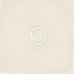 Pion Design Glistening Season skräppipaperi Labels