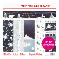 Craft Smart paperipakkaus Winter Dream, 12