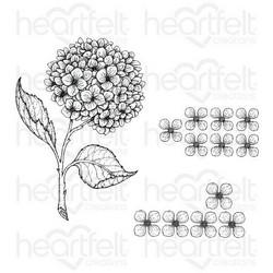 Heartfelt Creations Cottage Garden Hydrangea -leimasinsetti