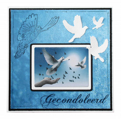 Joy! crafts Pigeons & Frame -stanssisetti