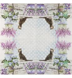 Servetti Kitten, 20 kpl