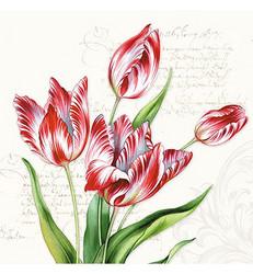 Servetti Classic Tulips, 20 kpl