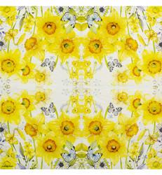 Servetti Classic Daffodils, 20 kpl