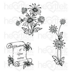 Heartfelt Creations Wild Aster Scroll & Cluster -leimasinsetti