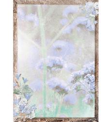 Studio Light A4 paperi Summer Breeze 322