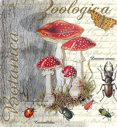 Servetti Fly Agaric and Beetle, 20 kpl