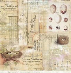 Craft O'clock skräppipaperi Hummingbird Song 01