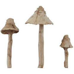 Tim Holtz Idea-Ology Resin Toadstools -koristeet, 3kpl