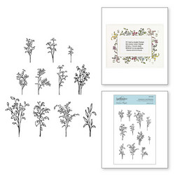 Spellbinders leimasinsetti Greenery and Blooms