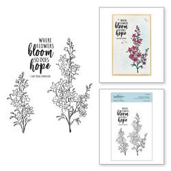 Spellbinders leimasinsetti Fragrant Flowers