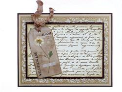 Creative Expressions stanssi Shabby Basics Tattered Tags