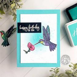 Hero Arts leimasin- ja stanssisetti Color Layering Hummingbird