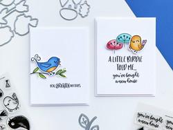 Catherine Pooler stanssisetti Lovely Birdies