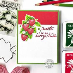 Hero Arts Strawberries -leimasinsetti