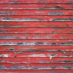 Reminisce Barnwood Beauty skräppipaperi #2
