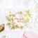 Pinkfresh Studio Hot Foil -kuviolevy Daisy Wreath