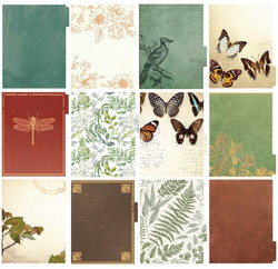 Paper House kalenteri, päiväämätön, Green Ferns