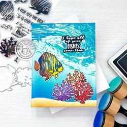 Hero Arts Color Layering Royal Angelfish -leimasinsetti