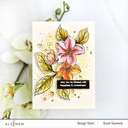 Altenew Craft Your Life Project Kit: Hello Beautiful -setti