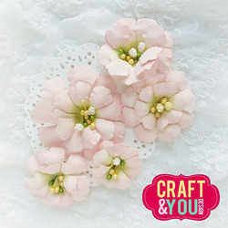 Craft & You stanssi Cosmos Flower