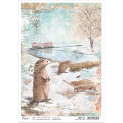 Ciao Bella riisipaperi Beavers Tree Farm
