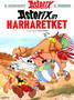 Asterix 26: Asterixin harharetket