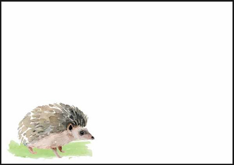 Hedgehog - envelope (C6)