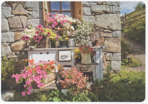 Old oven and flowers