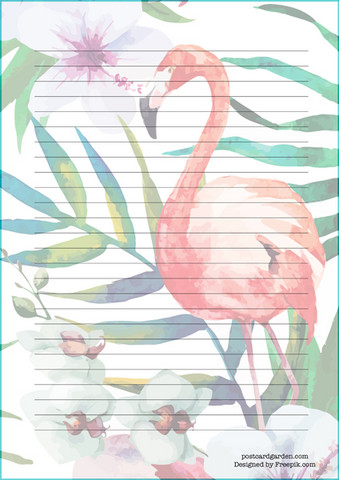 Flamingo #2 - writing papers (A5, 10s)