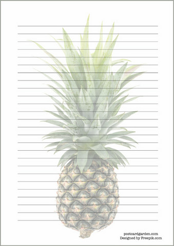 Pineapple #2 - writing papers (A5, 10s)