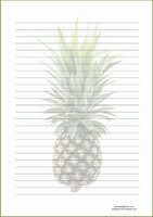 Pineapple #2 - writing papers (A4, 10s)