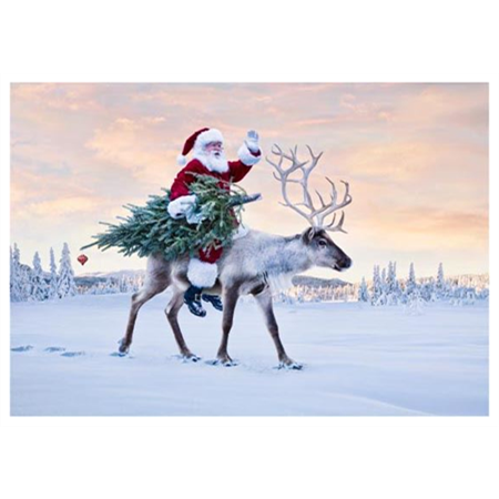 Santa Claus rides with reindeer