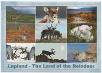 Lapland - The Land of the Reindeer