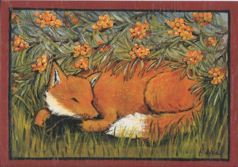 Fox's sleep