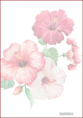 Watercolour hibiscus - writing papers (A4, 10s, not lined)
