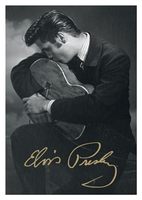 Elvis and guitar