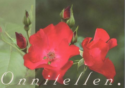 Onnitellen - ruusut
