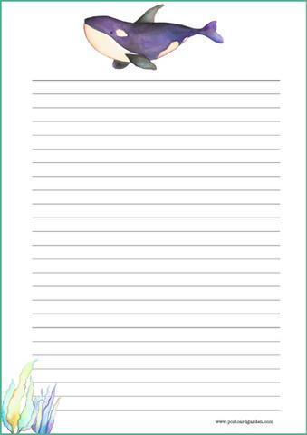 Miekkavalas -kirjepaperit (A4, 10s)