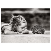 Hedgehog and girl