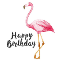 Happy Birthday - flamingo (14x14cm)