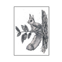 Forest animals - Squirrel