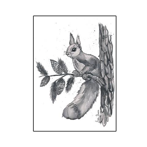 Metsäneläimet - Orava
