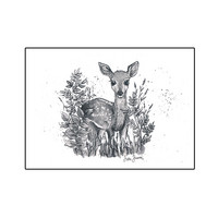 Forest animals - Deer