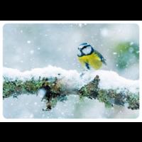 Luminen sinitiainen