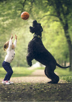 Little kids and their big dogs #2