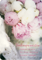Vaaleanpunaisten terälehtien alla